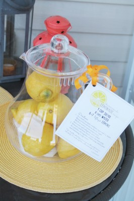 Lemonade kit